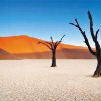 Namibia deserto Namib