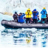 Oceanwide avvistamento orso