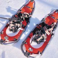 SNOWSHOEING IN THE DOLOMITES winter activities