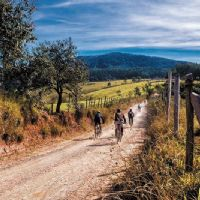 GROUP BIKE TOUR PROPOSALS ITALY