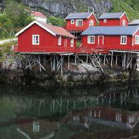 NORVEGIA inverno ARCTIC LIGHTS, NARVIK E LOFOTEN 21/22